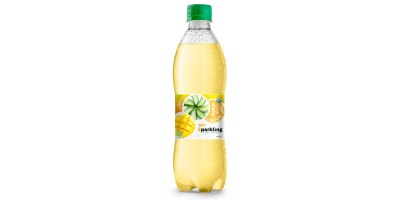 Beverage wholesale Sparkling  aloe vera  mango 500ml from RITA US